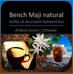 Bench Maji