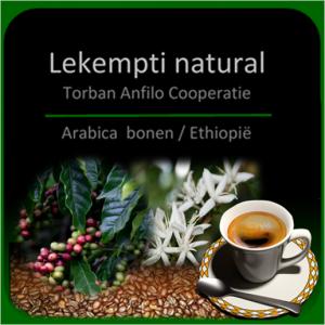 Lekempti Coffee